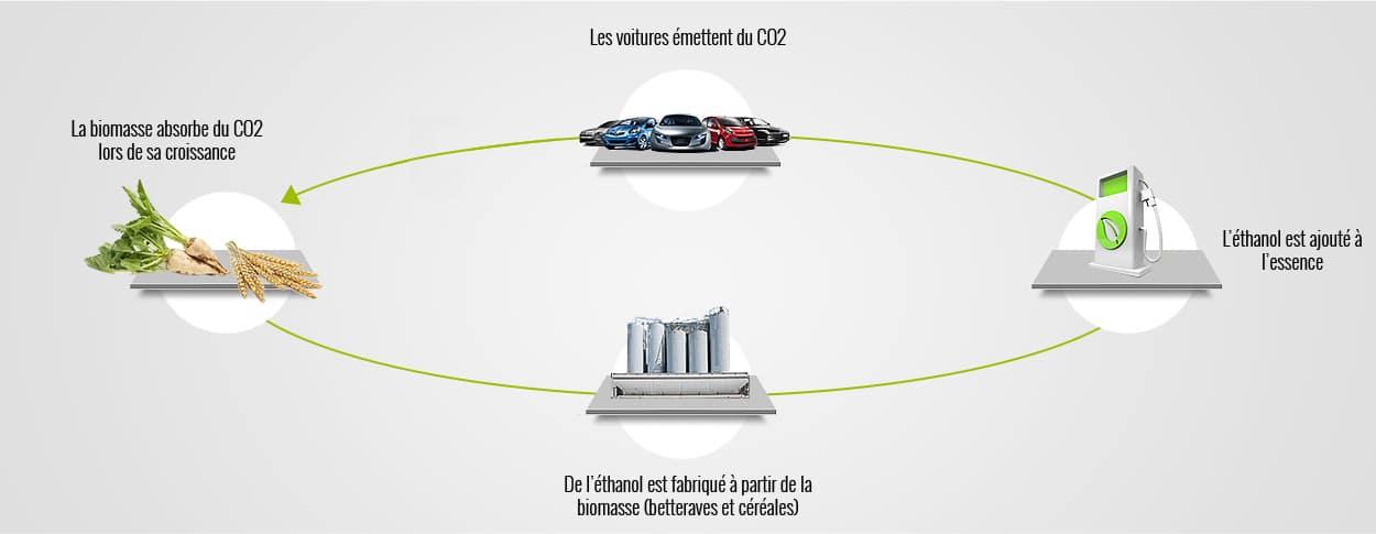 Cycle-carbone-01